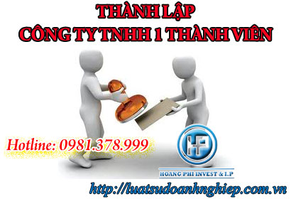 ho-so-thanh-lap-cong-ty-tnhh-1-thanh-vien