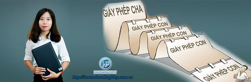 Dich-vu-giay-phep4